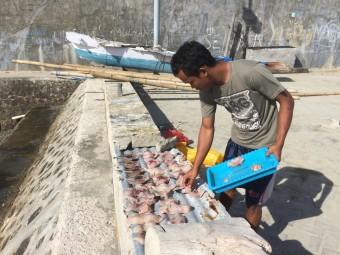 Vis drogen op straat